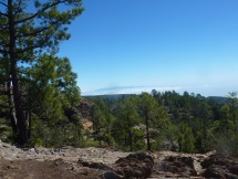 Gran Canaria floating in the clouds above the Coronal forrest